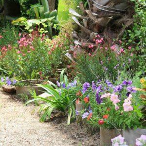 Swan-Lake-Gardens-img (107)